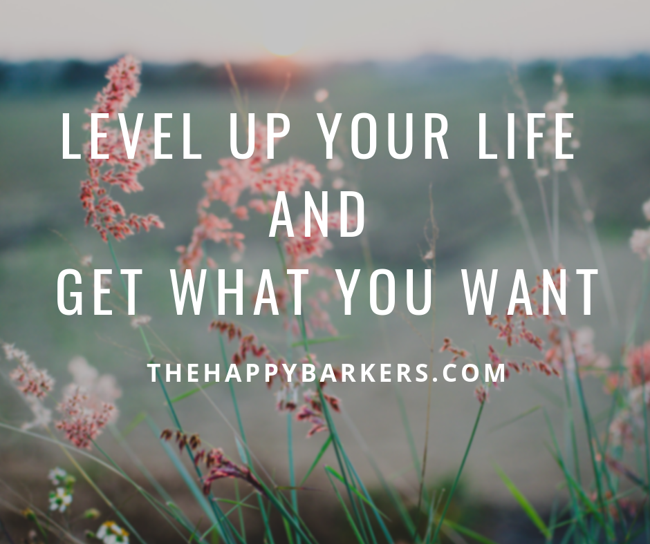 Level Up your life and get what you want