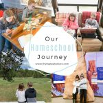 Homeschooling- 5 curriculums in 6 months